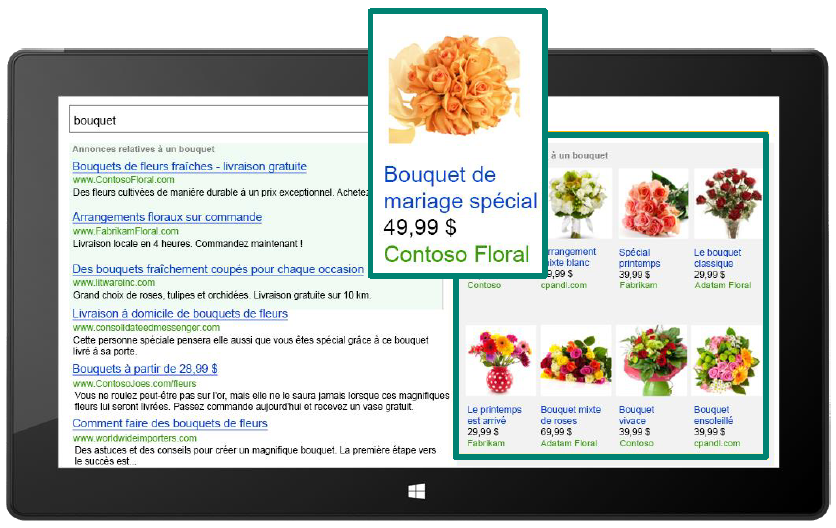Bing_Shopping_Exemple_Ads.png