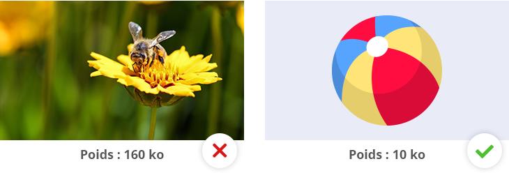 À gauche : une photo en PNG, de poids 160Ko ; à droite : un logo en PNG, de poids 10Ko