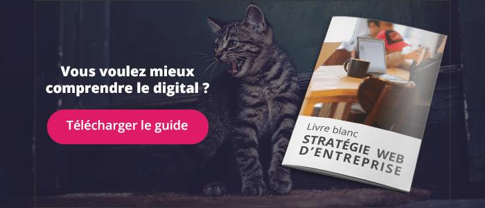 Le guide de la stratégie digitale