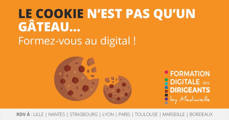 Formation_Digitale_Dirigeants__cookie.png