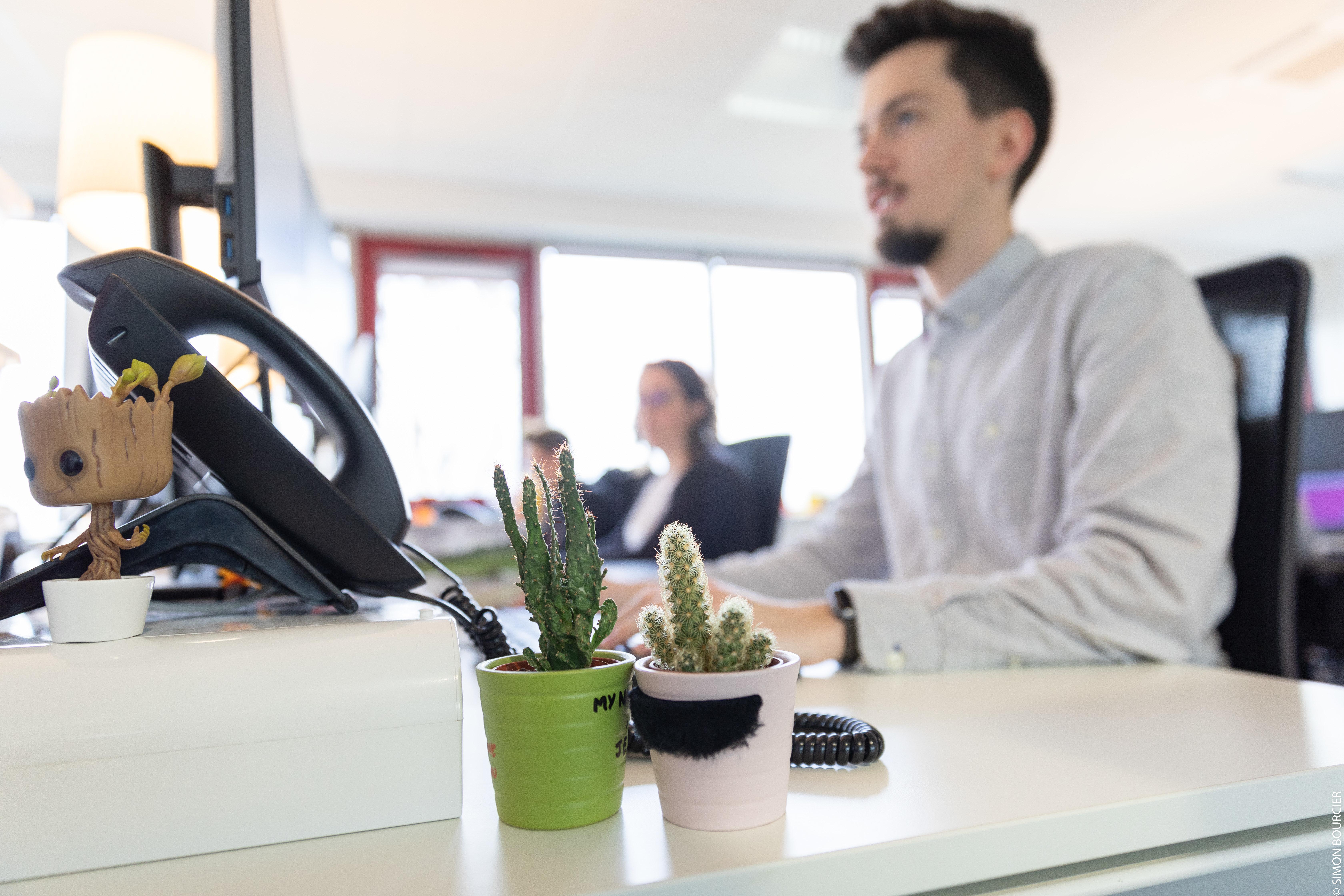 Cactus et téléphone sur un bureau au premier plan, collaborateur qui travaille en arrière-plan